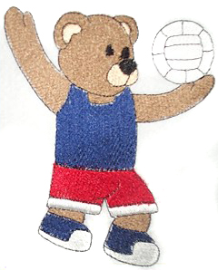 Volleyball Bear